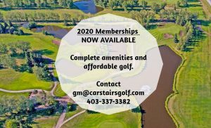 2020 website